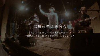 『三線の音』ライブ映像を公開!